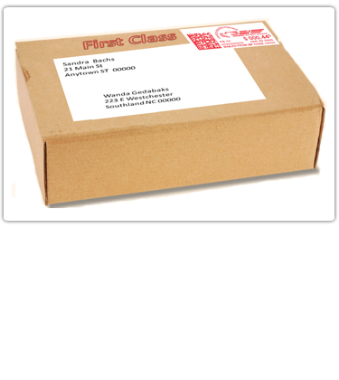 All First-Class Mail® is closed against postal inspection and the USPS® delivery objective is 2 to 3 days.